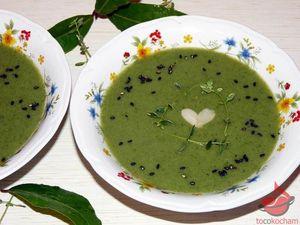 Kremowa zupa brokułowa zeszpinakiem tocokocham.com