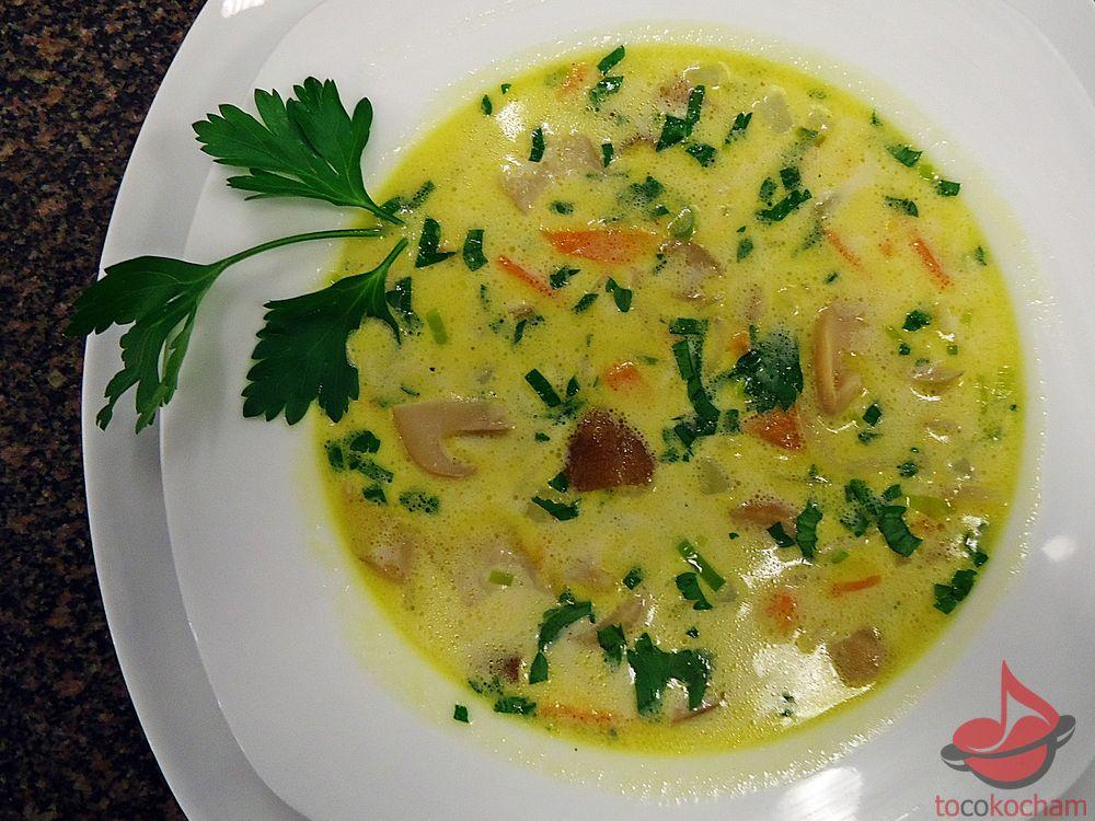 Zupa borowika tocokocham.com