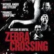 Zebra Crossing recenzja