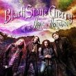 Black Stone Cherry Magic Mountain recenzja