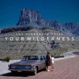 Pineapple Thief Your Wilderness recenzja