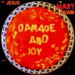 Jesus Mary Chain Damage Joy recenzja