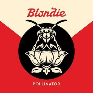 Blondie Pollinator recenzja