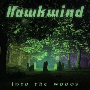 Hawkwind Into The Woods recenzja