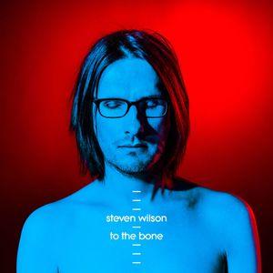 Steven Wilson ToThe Bone recenzja