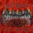 Voivod The Wake recenzja