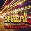 Waterboys Where The Action Is recenzja